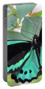 Butterfly Of Many Colors Portable Battery Charger