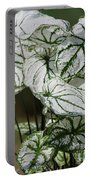 Caladium Named White Christmas Portable Battery Charger