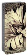 Calendula In Browns Portable Battery Charger
