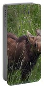 Calf Feeding Portable Battery Charger