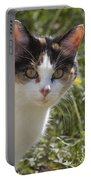 Calico Portable Battery Charger