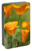 California Poppy Cluster Portable Battery Charger