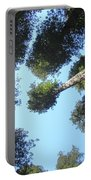 California Redwood Trees Fine Art Prints Forest Portable Battery Charger
