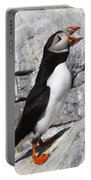 Call Of The Puffin Portable Battery Charger