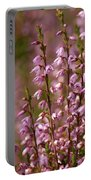 Calluna Vulgaris 2 Portable Battery Charger