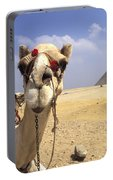 Camel In Giza Egypt Portable Battery Charger