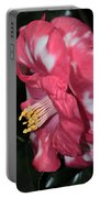 Camellia 3 Portable Battery Charger