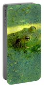 Camoufrog Portable Battery Charger