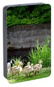 Canada Geese With Goslings Portable Battery Charger