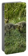 Canadian Goose Gosslings Portable Battery Charger