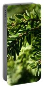 Canadian Hemlock Tips Portable Battery Charger