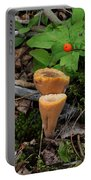 Candle Fungus Portable Battery Charger