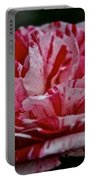 Candy Cane Rose Portable Battery Charger
