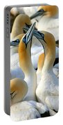 Cape Gannet Courtship Portable Battery Charger by Bruce J Robinson