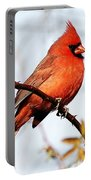 Cardinal 1 Portable Battery Charger