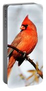 Cardinal 2 Portable Battery Charger