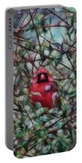 Cardinal Feb 2012 Portable Battery Charger