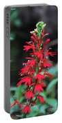Cardinal Flower Portable Battery Charger