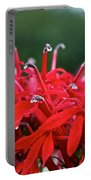 Cardinal Flower Close Up Portable Battery Charger