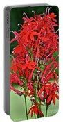 Cardinal Flower Full Bloom Portable Battery Charger
