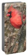 Cardinal In A Bush Portable Battery Charger