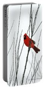Cardinal In Willow  Portable Battery Charger
