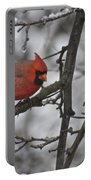 Cardinal Male 3666 Portable Battery Charger