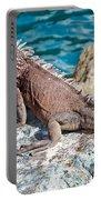 Caribbean Iguana Portable Battery Charger