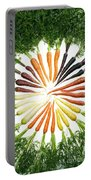 Carrot Pigmentation Variation Portable Battery Charger