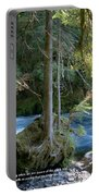 Cascade Rapids Portable Battery Charger