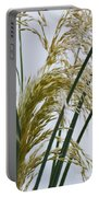 Cascading Pampas Portable Battery Charger