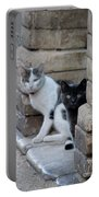 Cat Guardians Portable Battery Charger