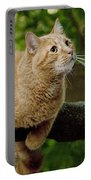 Cat Hanging On A Limb Portable Battery Charger