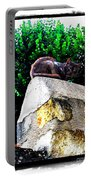 Cat On Medieval Wall Portable Battery Charger