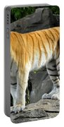 Cat On The Rocks Portable Battery Charger