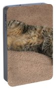 Catnip Portable Battery Charger
