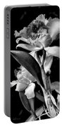 Cattleya - Bw Portable Battery Charger