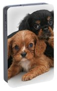 Cavalier King Charles Spaniel Puppies Portable Battery Charger