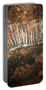 Cave Painting Of A Witchittey Grub Portable Battery Charger