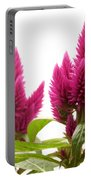 Celosia Argentea Portable Battery Charger