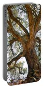 Centenarian Cork Tree Portable Battery Charger