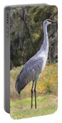Central Florida Sandhill Crane With Oaks Portable Battery Charger