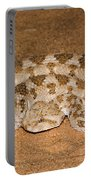 Cerastes Cerastes Horned Viper Portable Battery Charger
