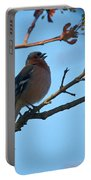 Chaffinch Portable Battery Charger