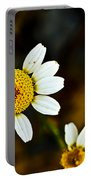 Chamomile Flower In Decay Portable Battery Charger