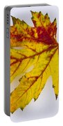 Changing Autumn Leaf In The Snow Portable Battery Charger