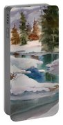 Changing Seasons Portable Battery Charger