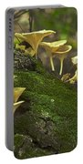 Chanterelles 8681 Portable Battery Charger