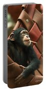 Cheeky Chimp Portable Battery Charger