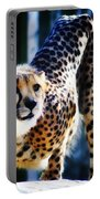 Cheeta Portable Battery Charger